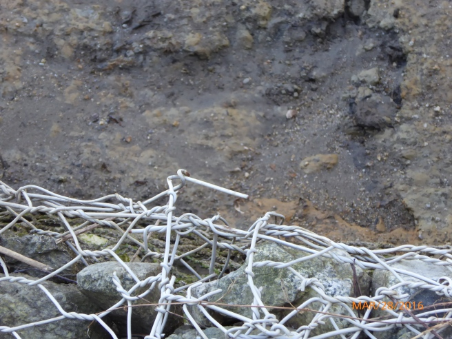 GABION WIRE EXTENDING INTO RIVER BED