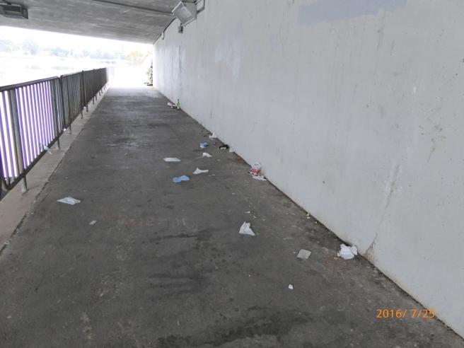 littered Riverside Ave. bridge