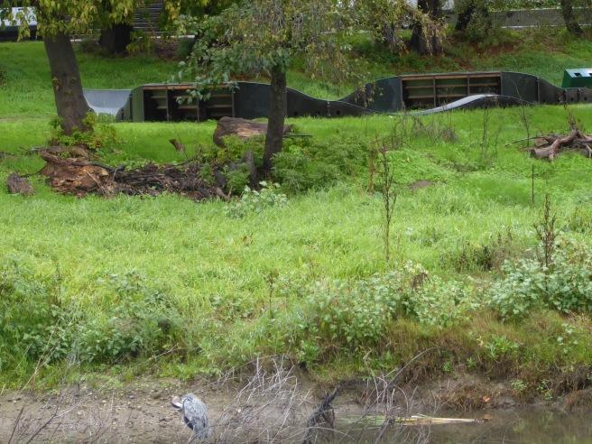 pump-track-and-heron